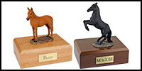 Equine Category